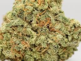 Sour J hemp strain for the genetics