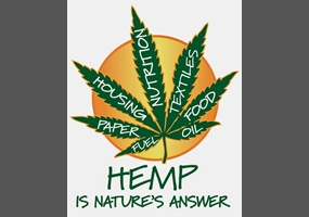 hemp growning