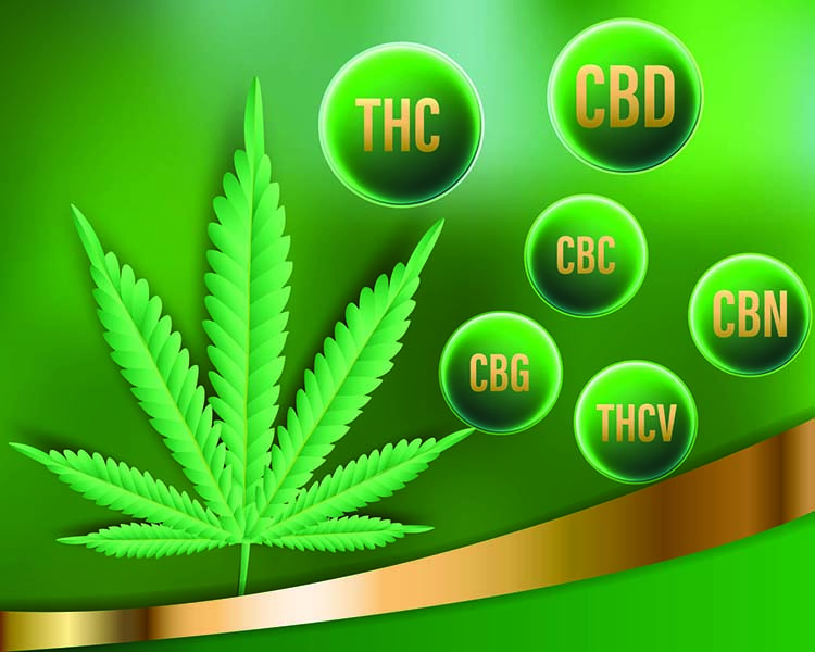 CBD hemp flower cannabinoids