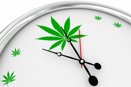 CBD hemp flower on the clock