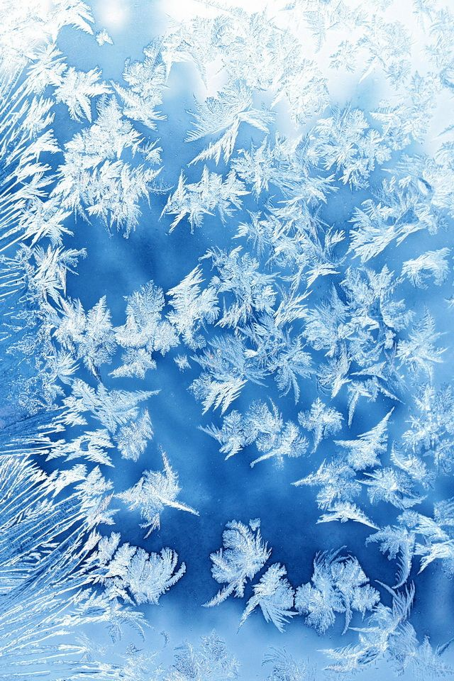 CBD flower frost