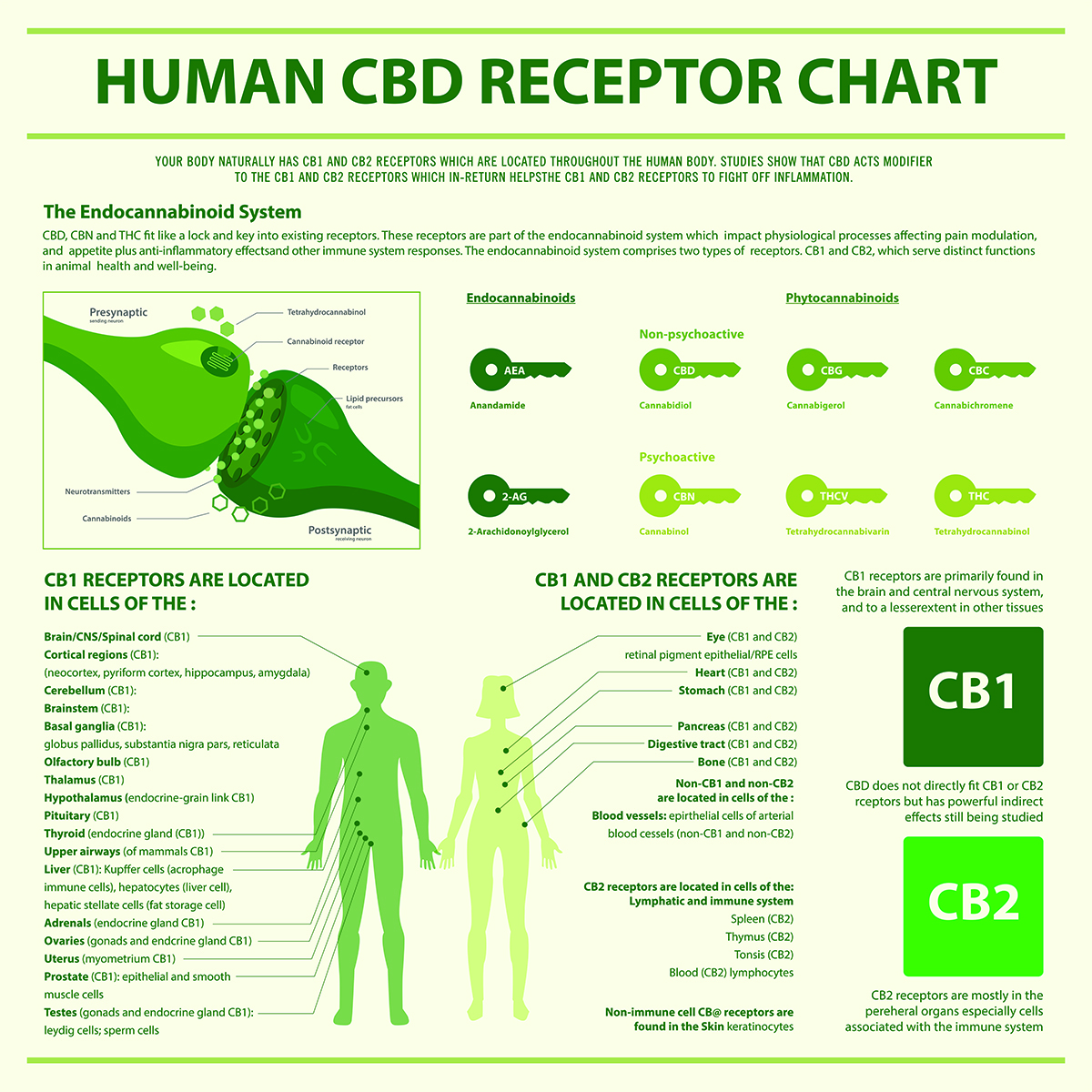 CBD for better health