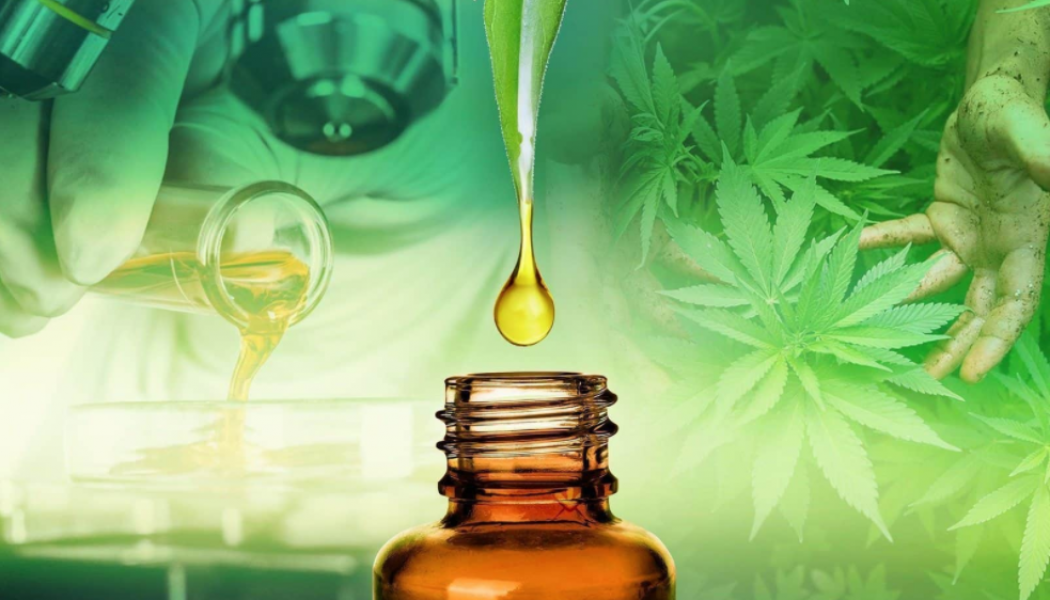 CBD and your most important organ