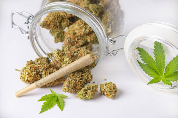you must know about hemp pre-rolls